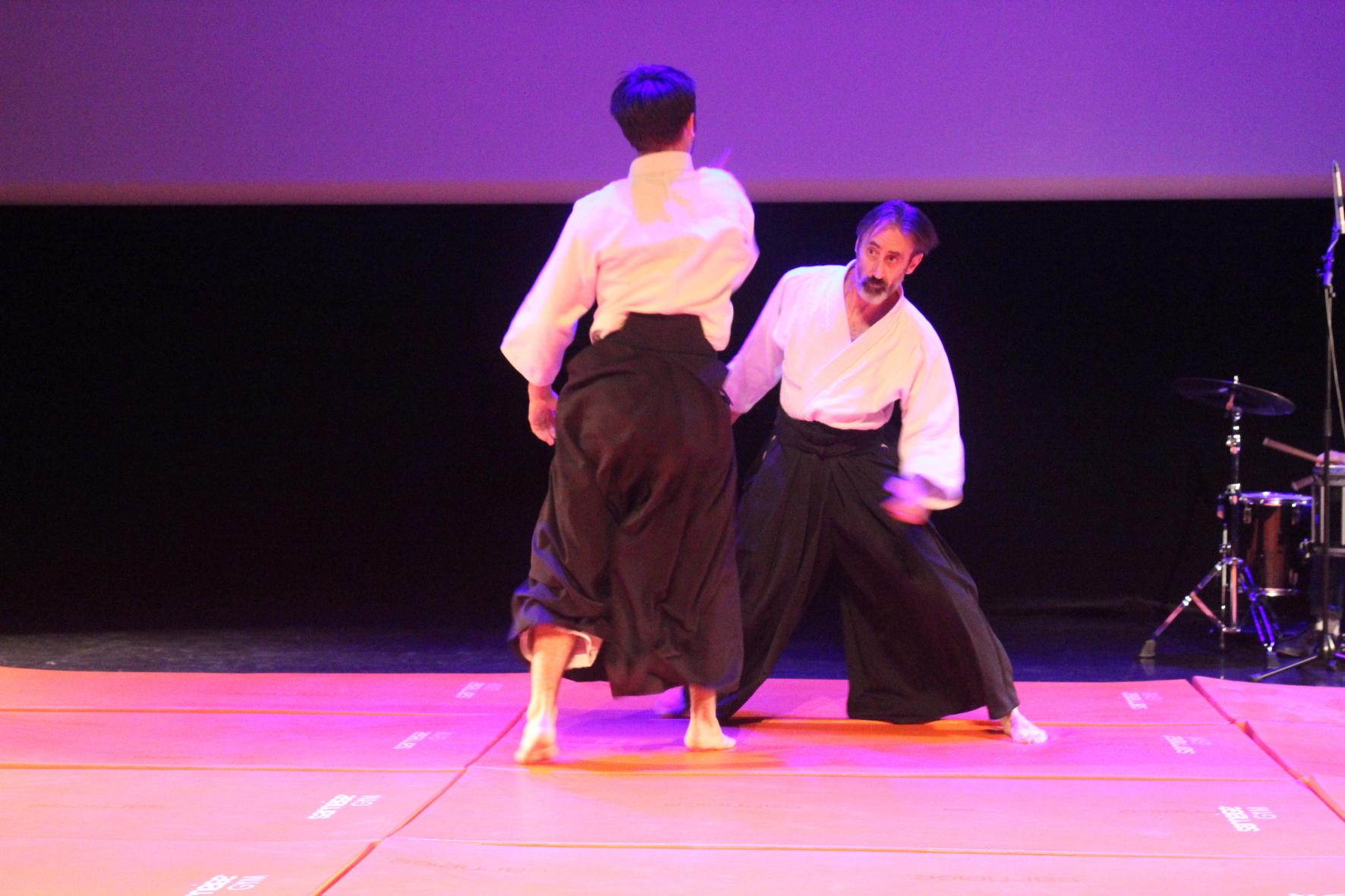 Aikido 17 10 2015 103