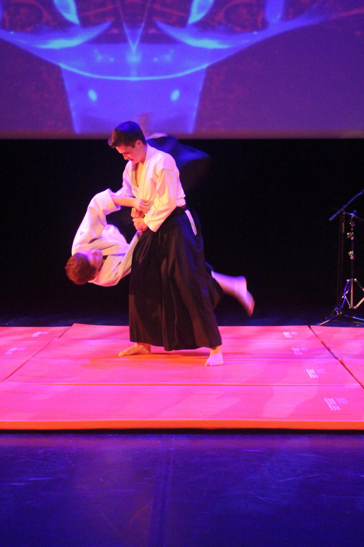 Aikido 17 10 2015 110