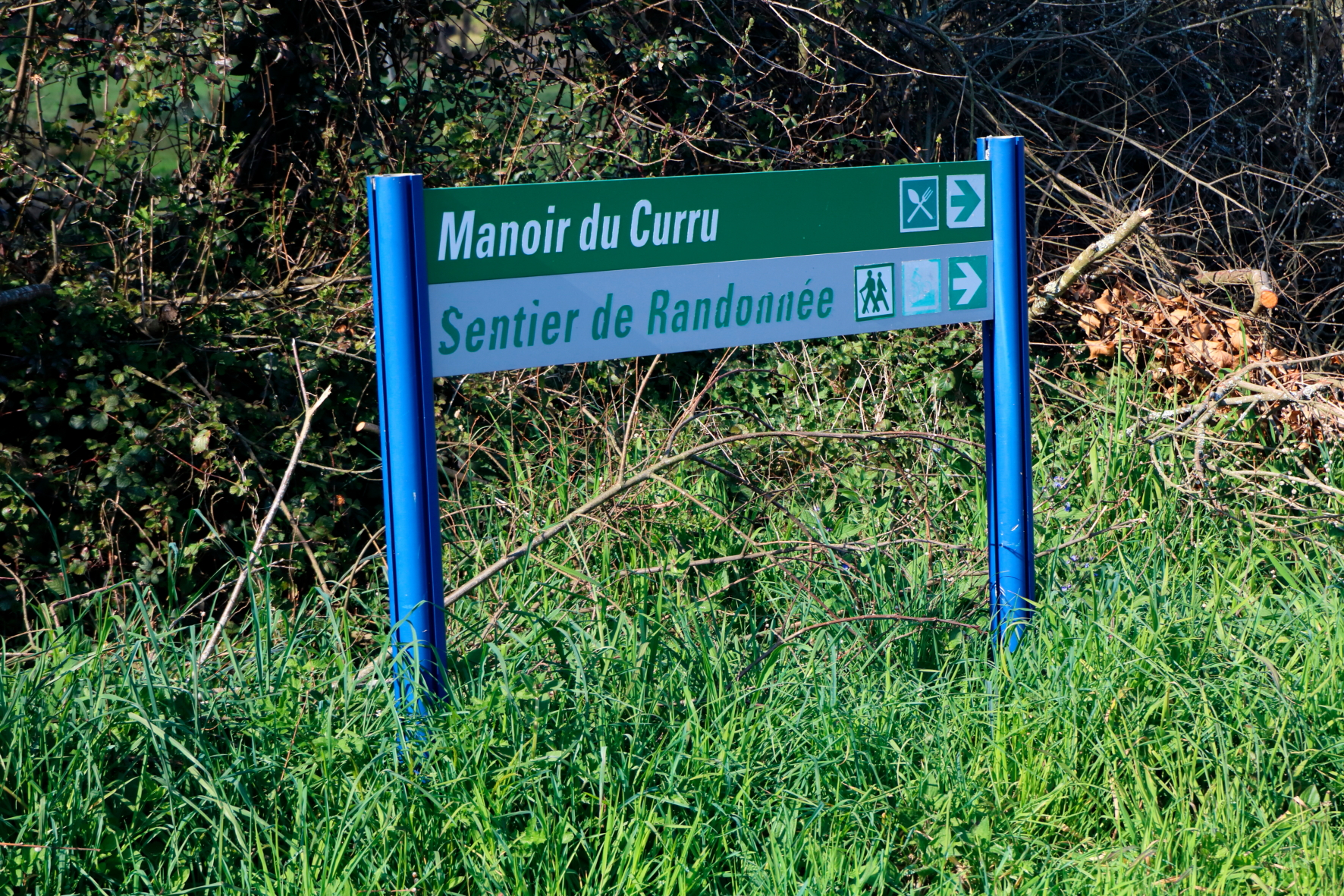 Le-Curru-11-04-167