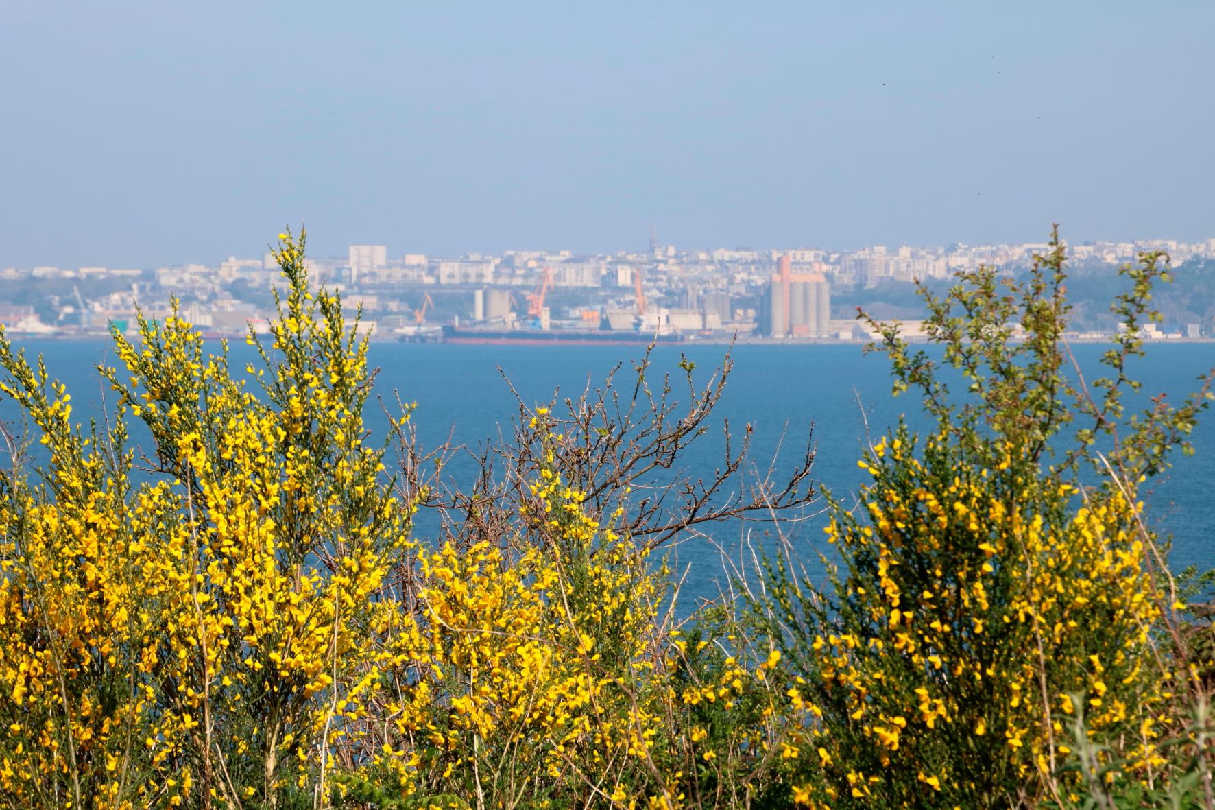 Pointe-Corbeau-22-04-173-panorama-