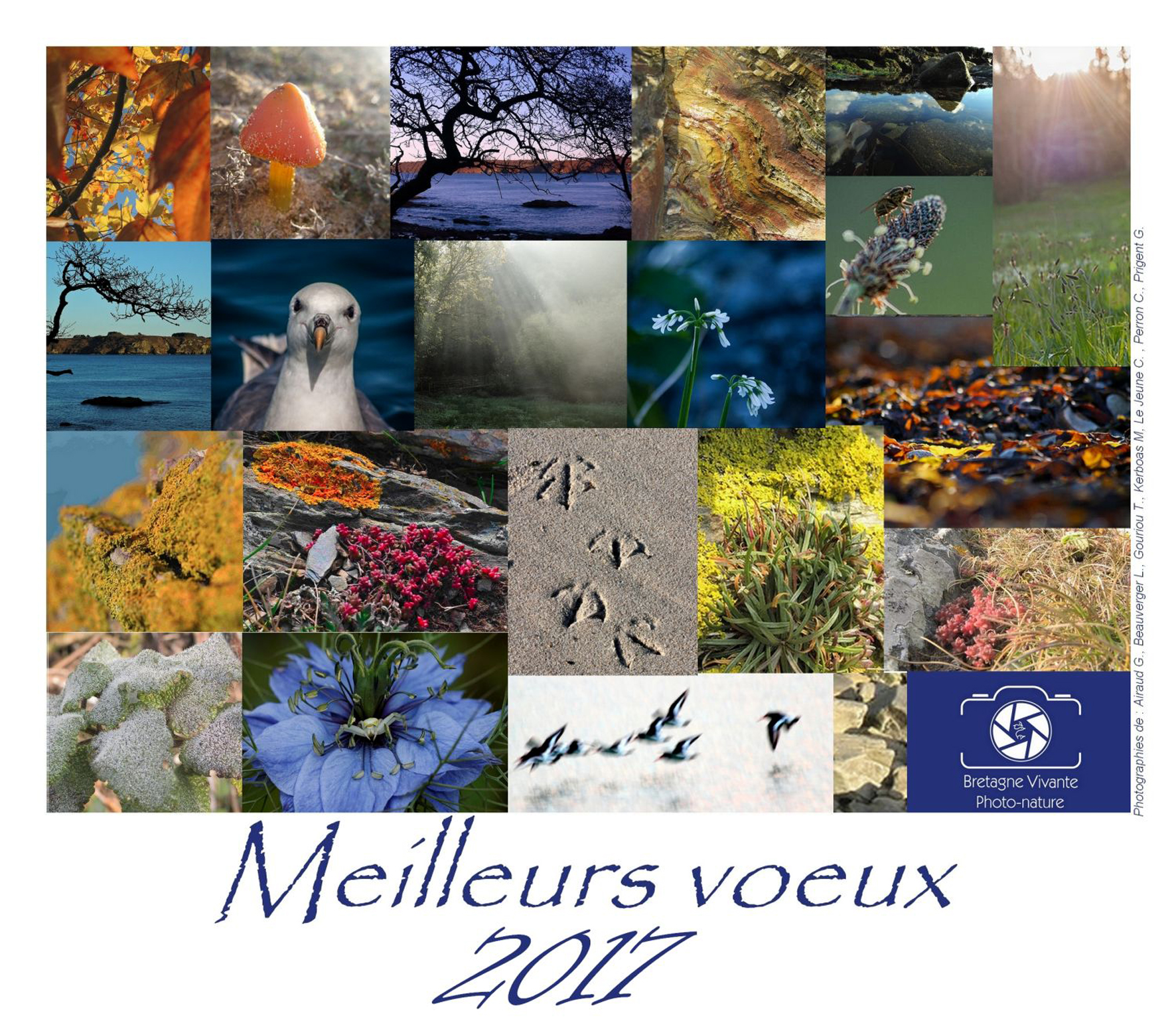 Carte de voeux_BV Photo Nature